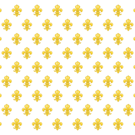 cropped-flag-of-france.png